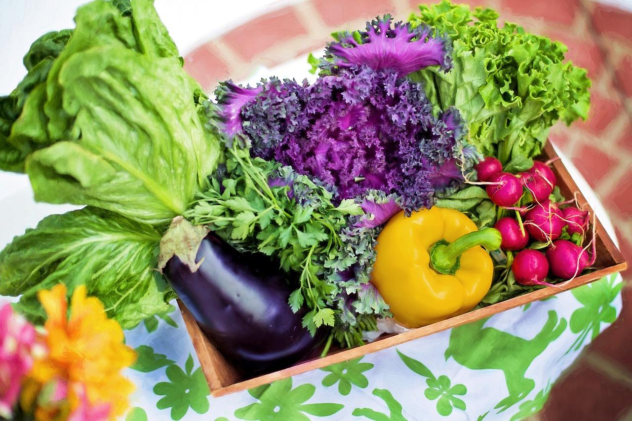 痩せやすい体になる!効果的なダイエットは基礎代謝アップがおすすめ